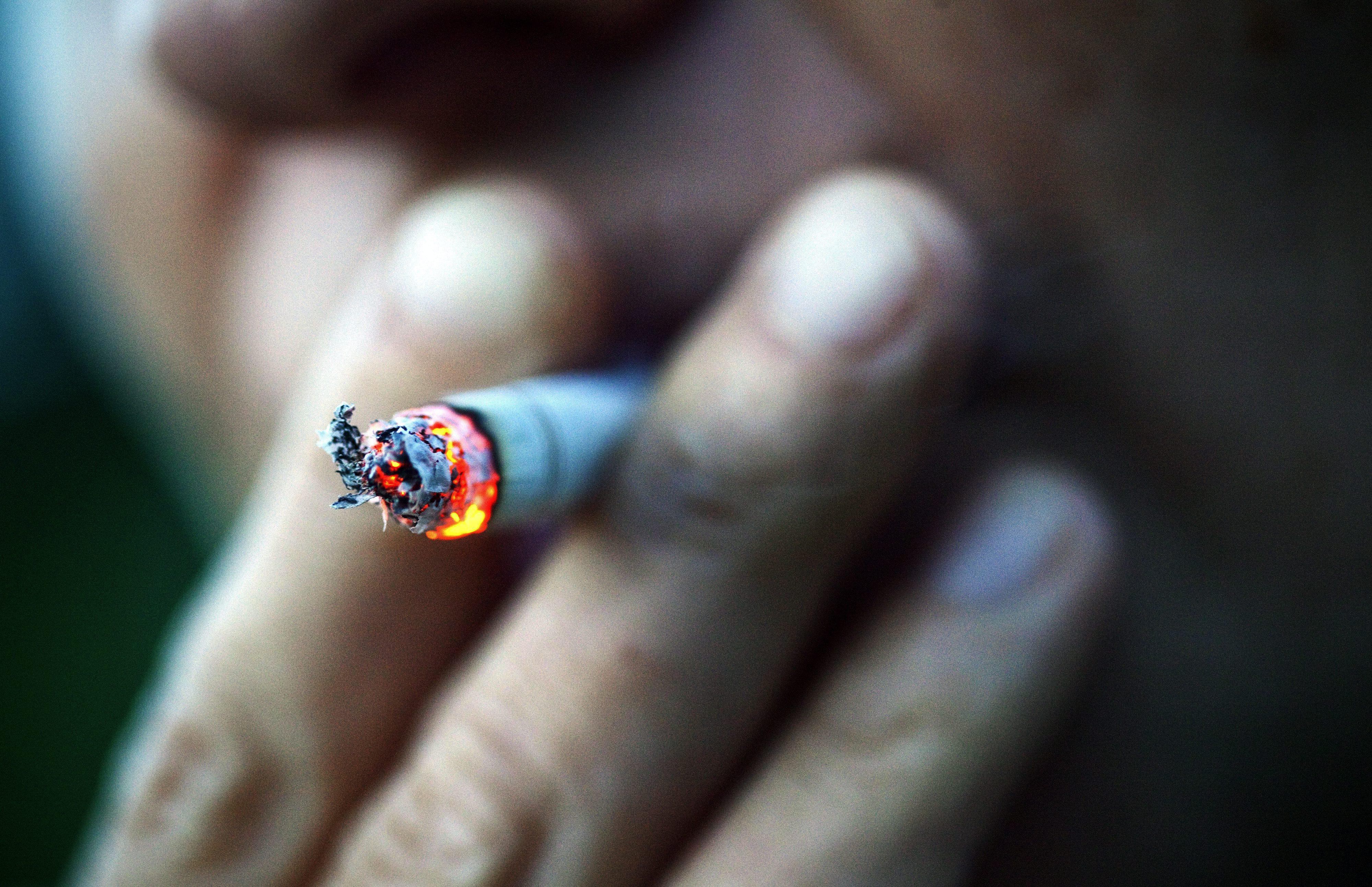 OMS quer convencer governos de que luta contra tabaco traz benefícios económicos