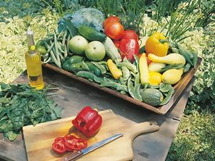 10 passos para criar a sua horta no jardim ou no quin