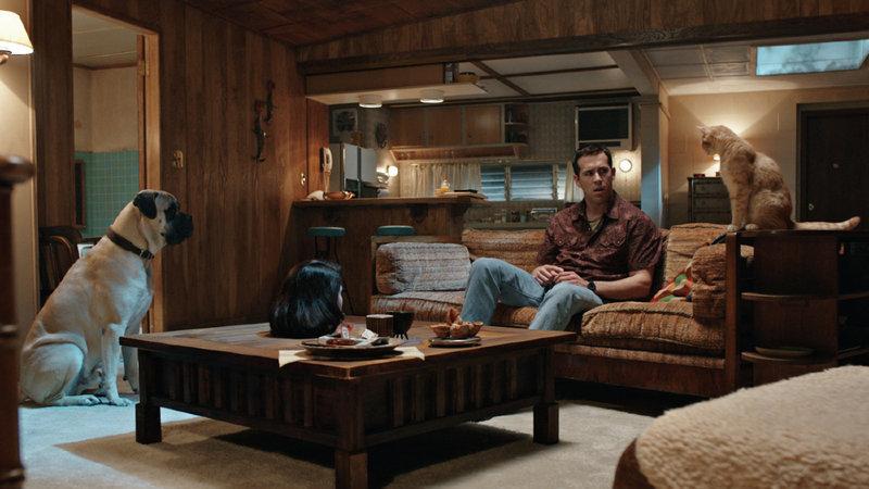 e-Cinema: Ryan Reynolds assassina às ordens dos seus animais de estimação