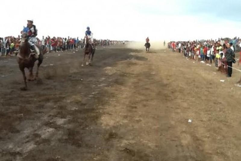 Seis cavalos apuram-se para a grande final em São Filipe